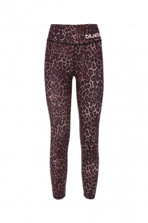 Leopard tights